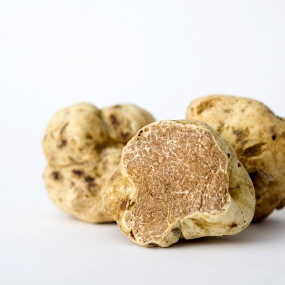 White Truffle (Tuber magnatum Pico) 100g.*